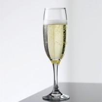 Klassisk Champagneglas, 6 stk.